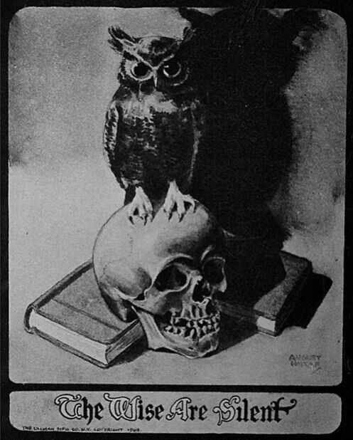the witch's pyramid of 4 pillars | Owl painting, Masonic art, Macabre