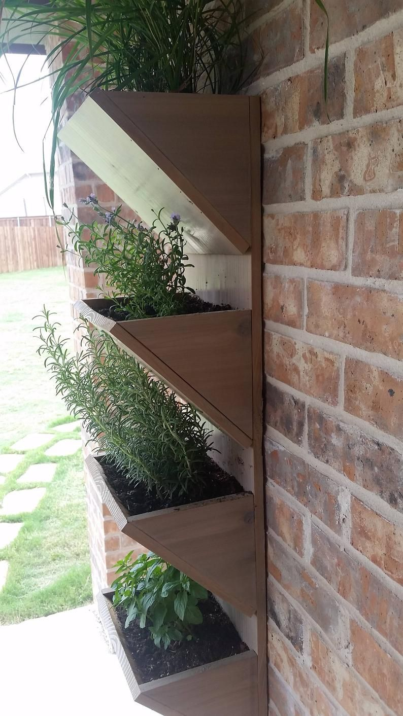 Living Wall Planter Wall Planter Box Herb Garden Etsy In 2020 Vertical Garden Planters Large Garden Planters Herb Garden Planter