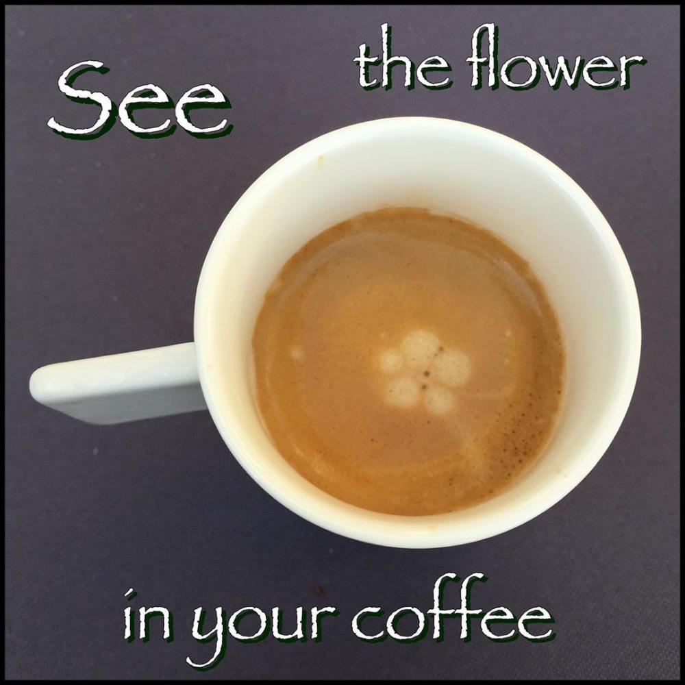 good morning mindalyzer quote coffee flower coffeeart