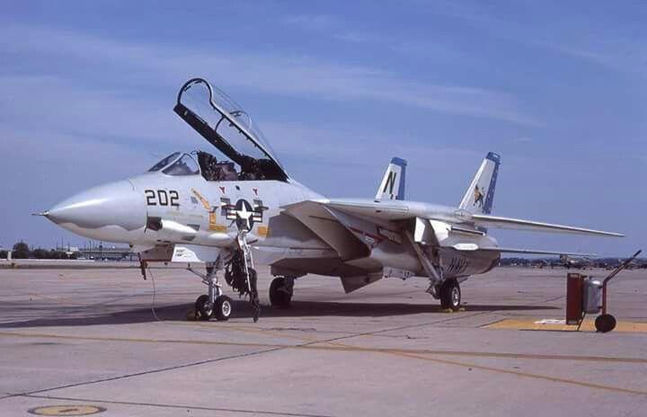 """Grumman F-14A Tomcat of VF-213 """"Black Lions"""""""