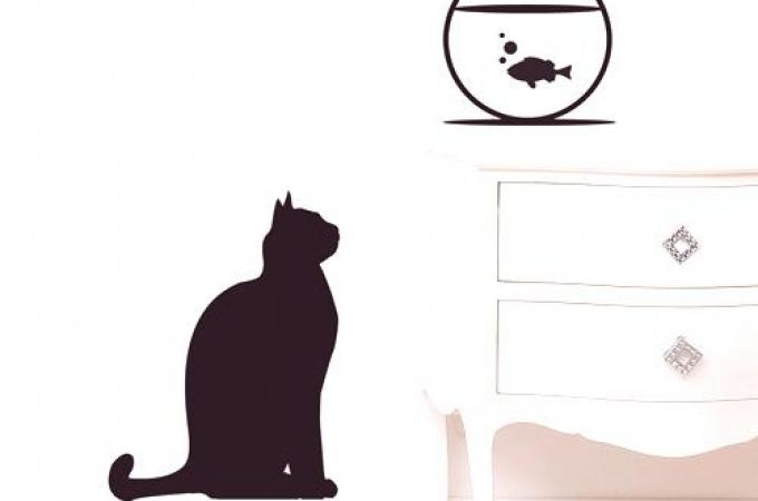 Funny Cat Wall Decals Quotes Bing Images Cat Wall Wall Quotes