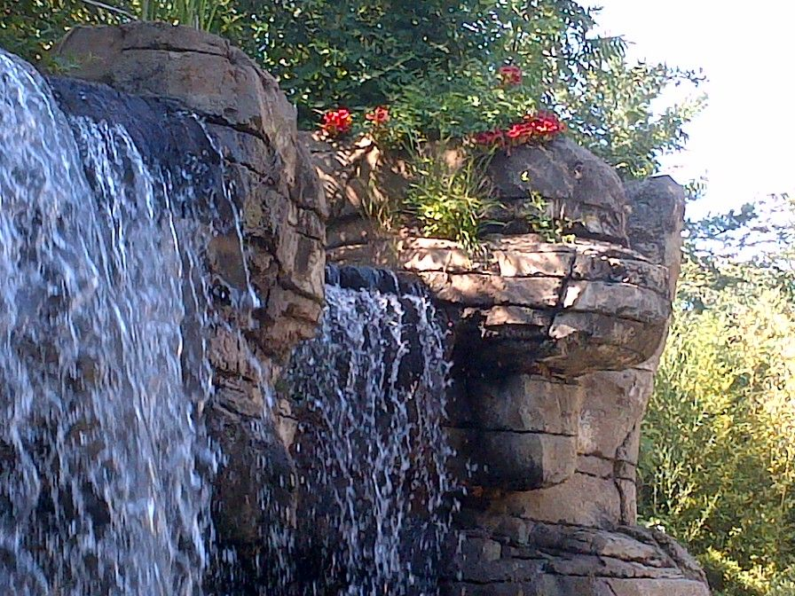 Waterfall and Flowers at the Zoo