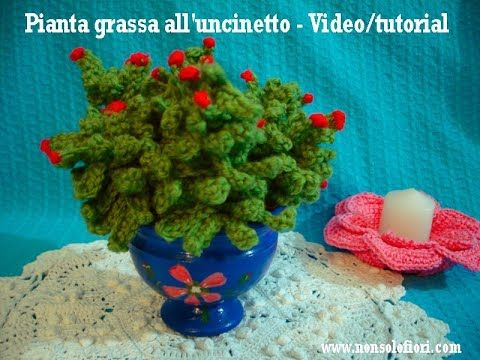 Pianta Grassa All Uncinetto Crochet Succulent Plant Youtube Piante Grasse Piante Uncinetto