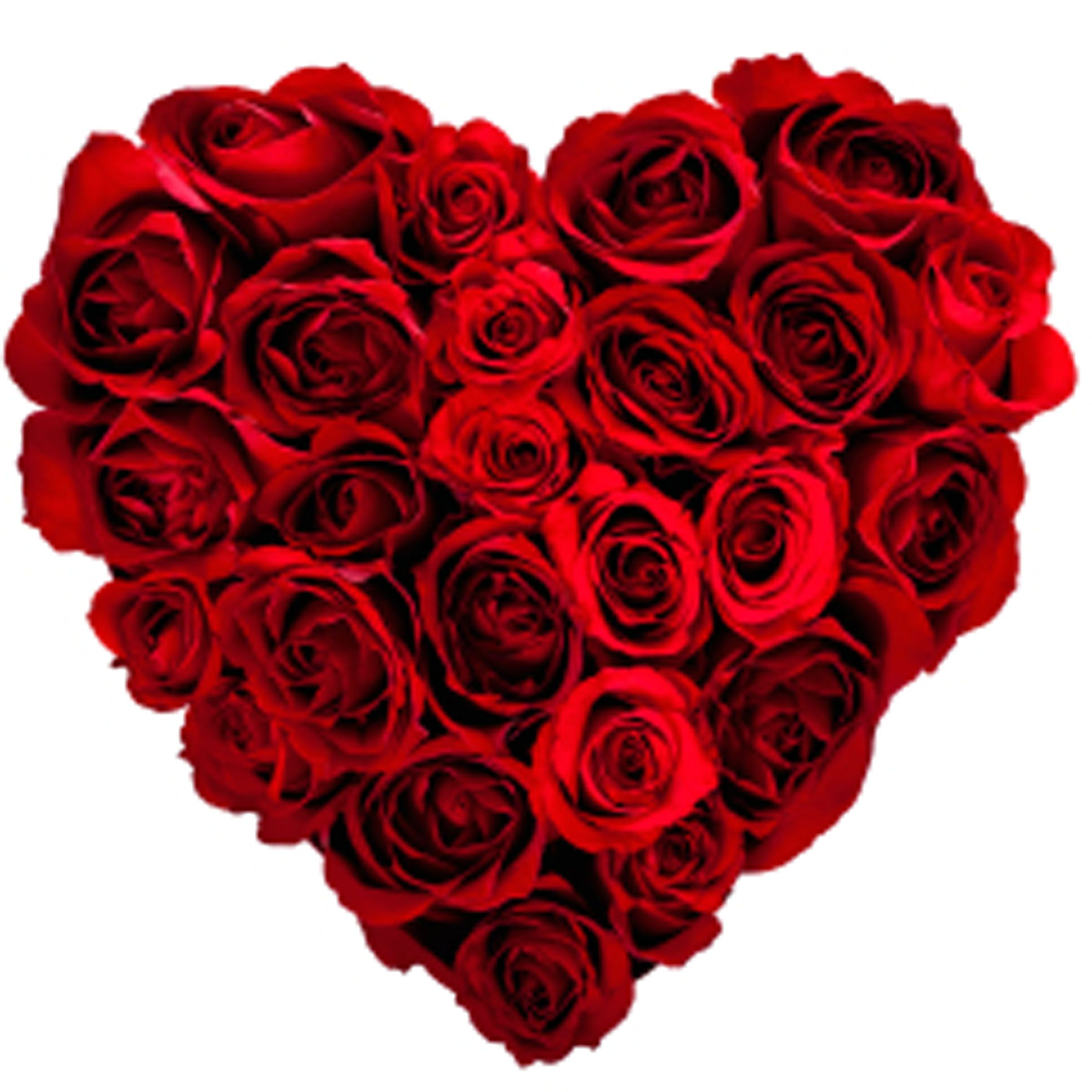 Image result for valentines heart images in roses