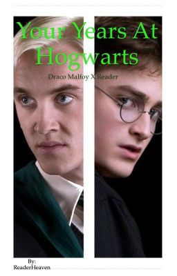 Draco Malfoy x Reader - Your Years At Hogwarts | Harry potter