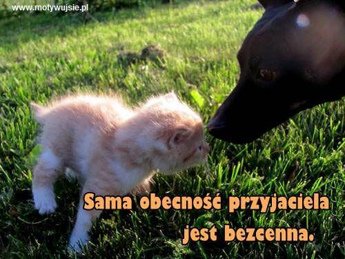 Przyjaźń | www.MotywujSie.pl