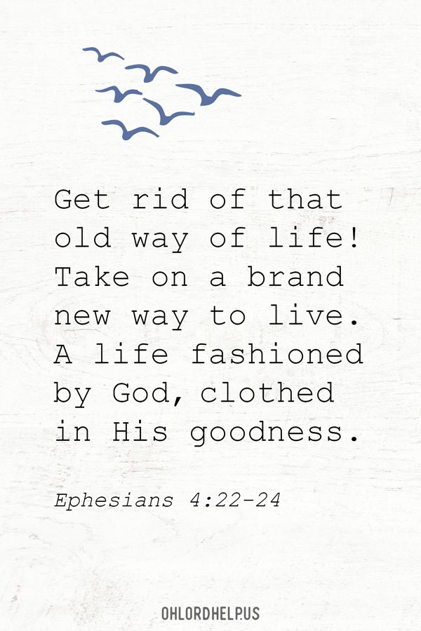 Newness: Learning to Live As New Creatures in Jesus Christ