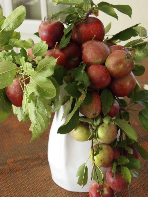 @ Centro de mesa com maçãs. Love.