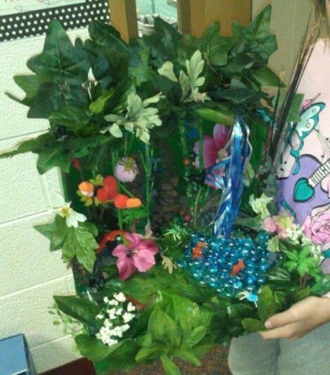 Tropucal rainforest shoebox habitat other pinterest - Schulprojekte ideen ...
