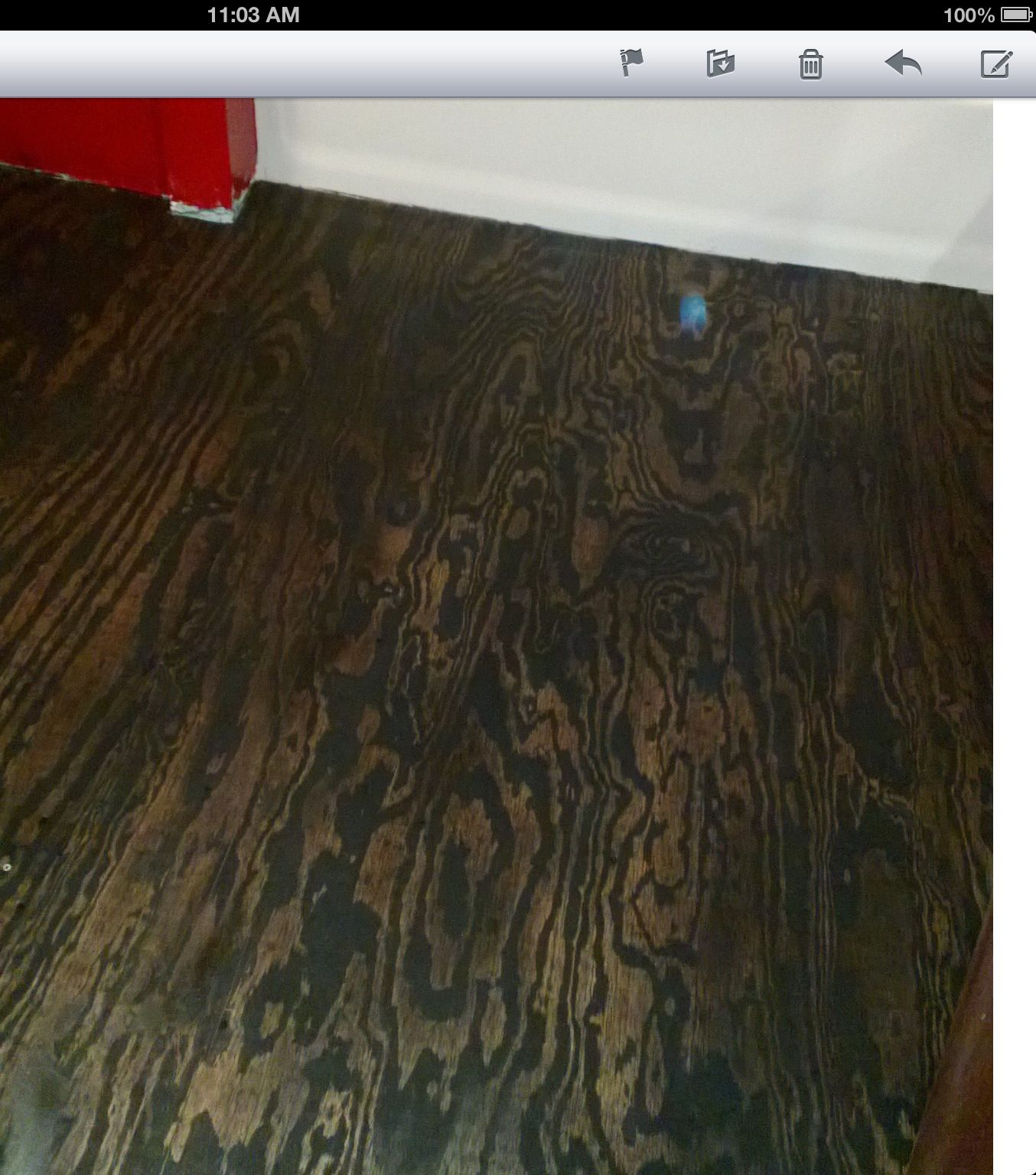 Plywood Floor Stained I Did One Coat Of Black Stain I Did Not Wipe It Down You Will Get A Major Zebra Effect Stained Plywood Floors Plywood Floor Flooring