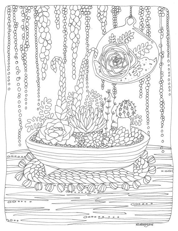 Hey I Found This Really Awesome Etsy Listing At 232347431 Terrarium Succulent Coloring Page Pdf