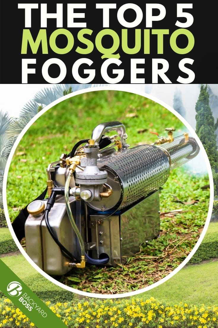 The Top 5 Mosquito Foggers (With images)   Mosquito fogger ...