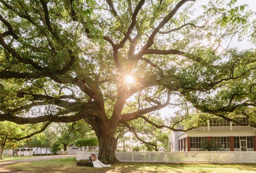 Portrait Of Sitting Under Oak Tree At George Ranch Historical Park Http