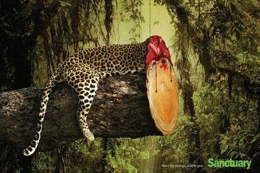 animal-rights-social-ads-call-of-the-wild-sanctuary-asia-2