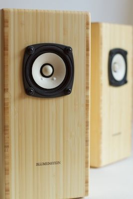Blumenstein Audio Fullrange
