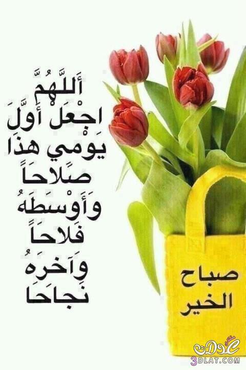 صباح الخير Morning Quotes Projects To Try Greetings