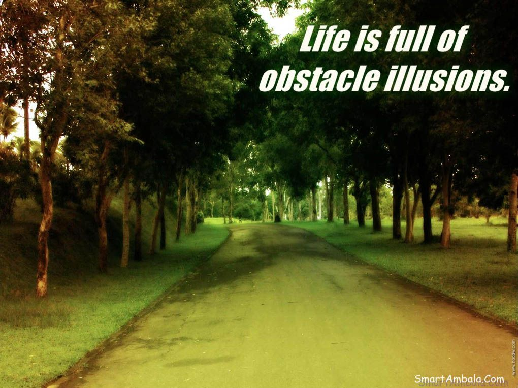 Life is full of obstacle illusions.