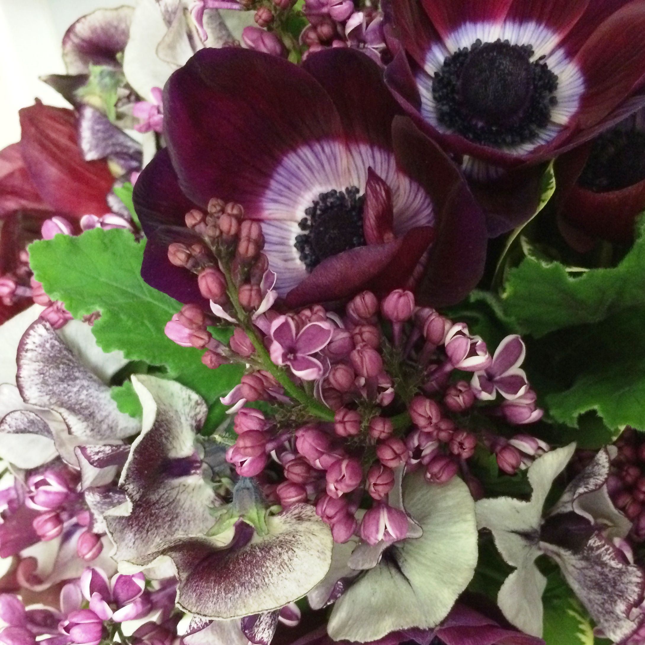 Color palette shades of purple with variegated lilac sweet peas color palette shades of purple with variegated lilac sweet peas and anemones fiori floral design seattle wa izmirmasajfo