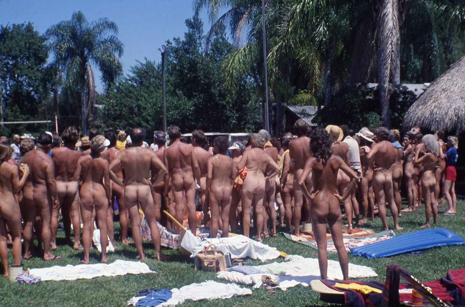 Lake Coma Nudist Camp Lutz Fla Watching A Wet T Shirt Contest Honest
