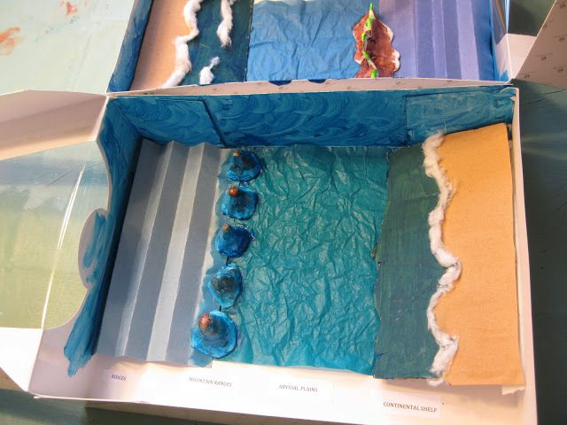 Ocean Floor Project Projects Habitats