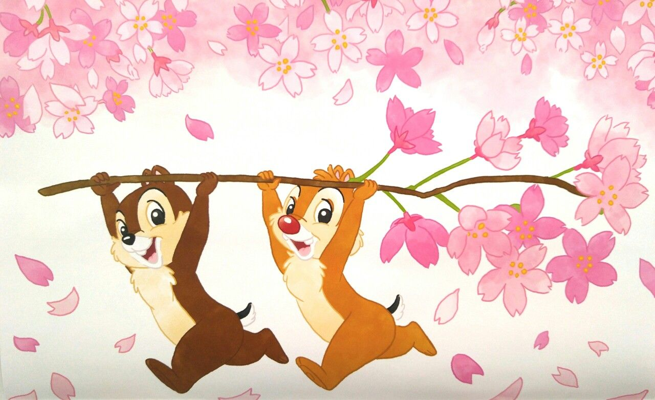 Chip dale chip and dale pinterest - Chip n dale wallpapers free download ...