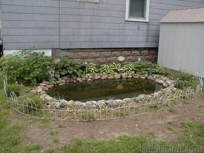Fish pond water filter plans fish free engine image for for Diy goldfish pond