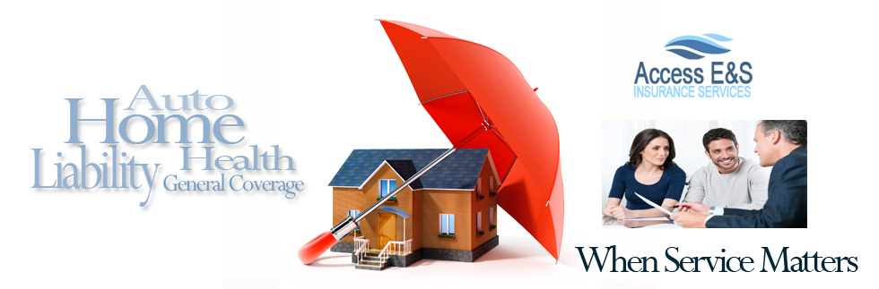 Founded In 1999 Access E Insurance Services Inc Is A Wholesale