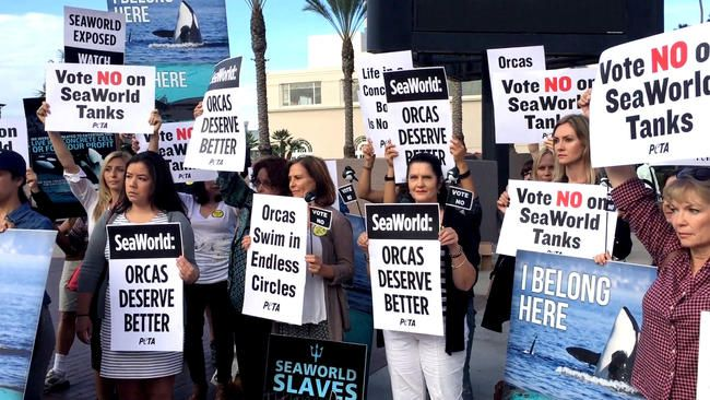 ban seaworld activists - Google Search