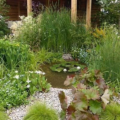 How to choose a site to build a wildlife pond pond for Design wildlife pond