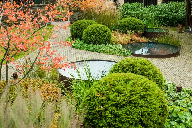 Why Fall Is the Best Time for Planting | Water features in ...