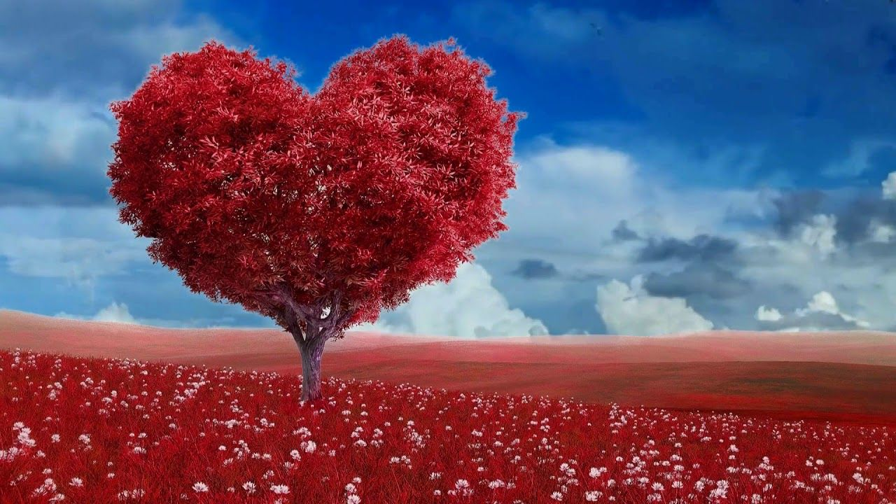 Beautiful 3d Landscape Nature Scenery 3d Background Video Effects 672 Valentines Wallpaper Wallpaper For Computer Backgrounds Free Valentine Wallpaper