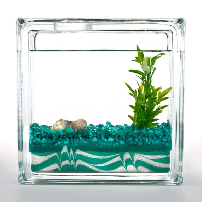 I Want All Of The Things Especially This Green Aqua Block Fish Bowl Look Is Where It S At