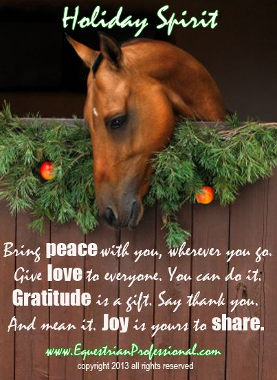 Equestrian Professional Com The Horse Business Site Horse Quotes Horses Holiday Spirit