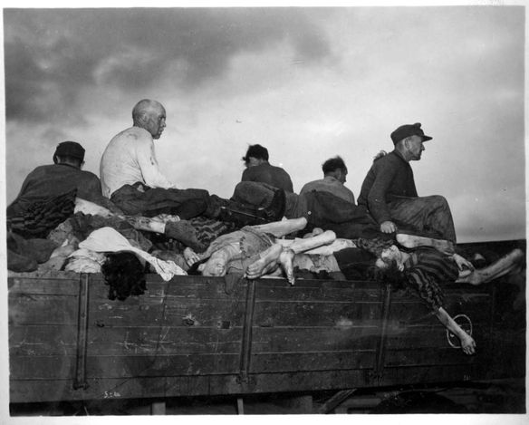 Bergen Belsen, Germany, German Civilians taking a cart full of corpses to burial after liberation.