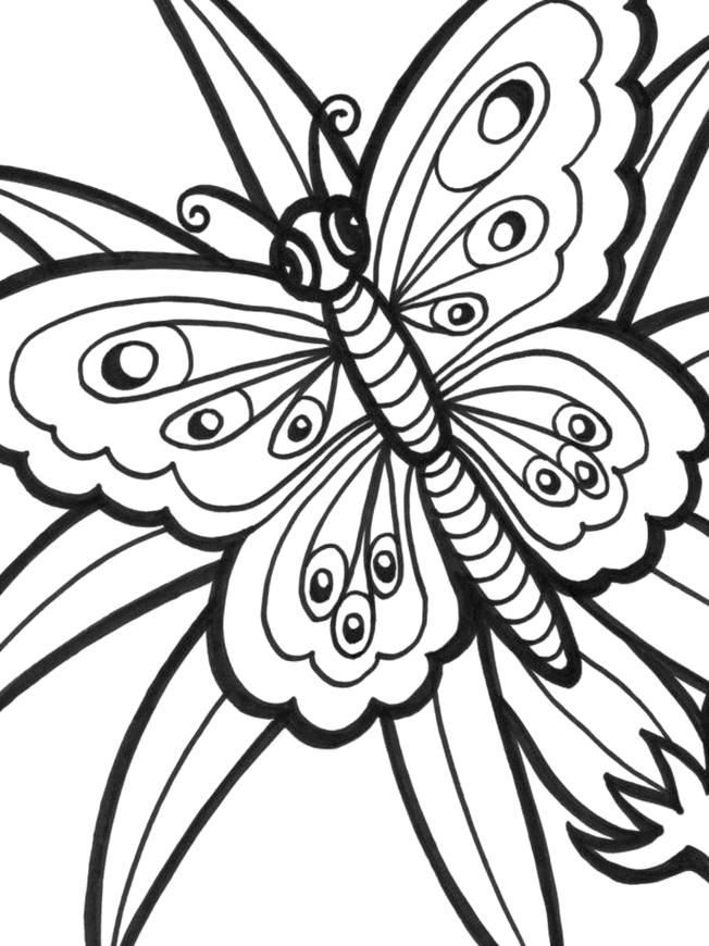 Pin By Annabel Layla On Quality Pins In 2020 Butterfly Coloring Page Flower Coloring Pages Animal Coloring Pages