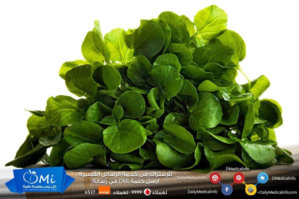 يساعد الجرجير على تقوية العظام لاحتوائه على فيتامين د وأيضا يساعد على امتصاص الكالسيوم اللازم لصحة العظام والأسنان صحة كل يوم معلومة Food Spinach Vegetables