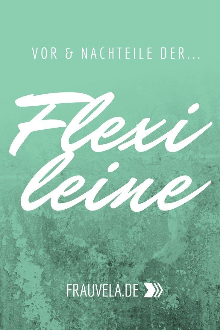 Flexileine - Fluch oder Segen? | Hundeleine flexi, Hunde