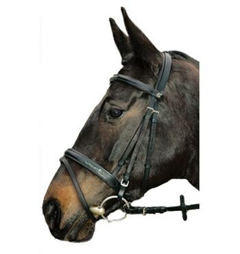 Kieffer Natascha II Bridle www greenhawk com   Equestrian