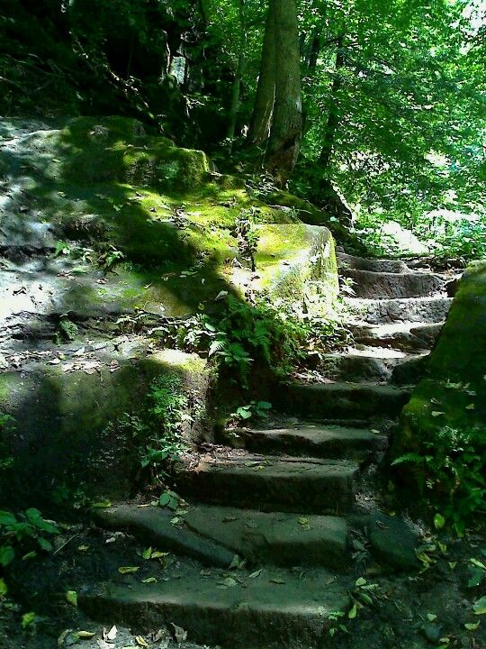 Turkey Run State Park in Indiana…hiking all those stairs while
