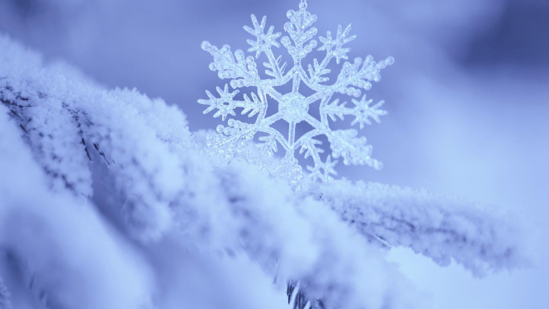 Snowflake wallpaper wallpapers backrounds pinterest snowflake wallpaper voltagebd Choice Image