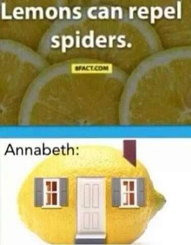 Annabeth  Bahahahahahahahahaha!! Probably be more like a