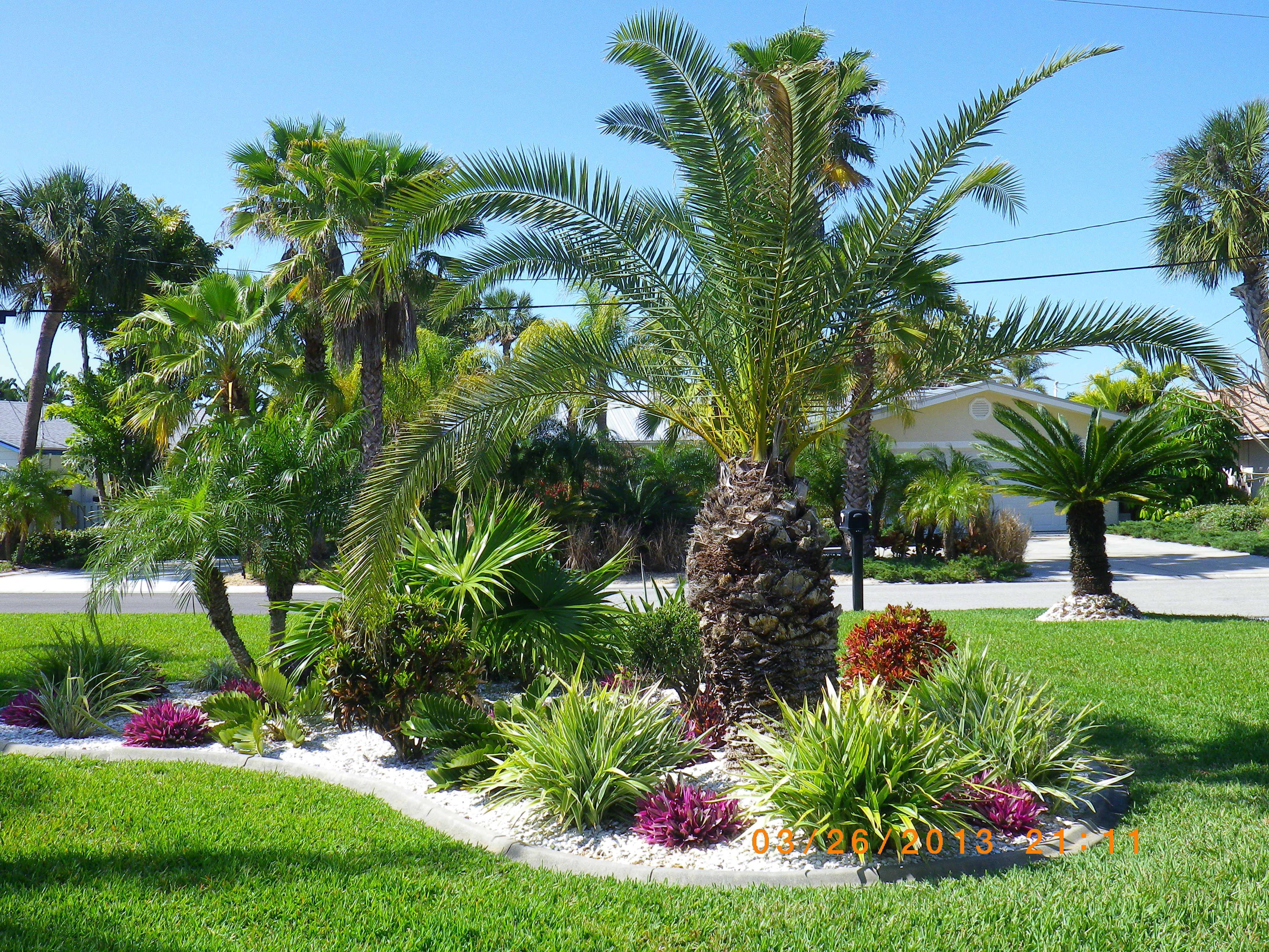 Photo Petit Jardin Exotique best 11 creating a lively and beautiful garden and lawn in