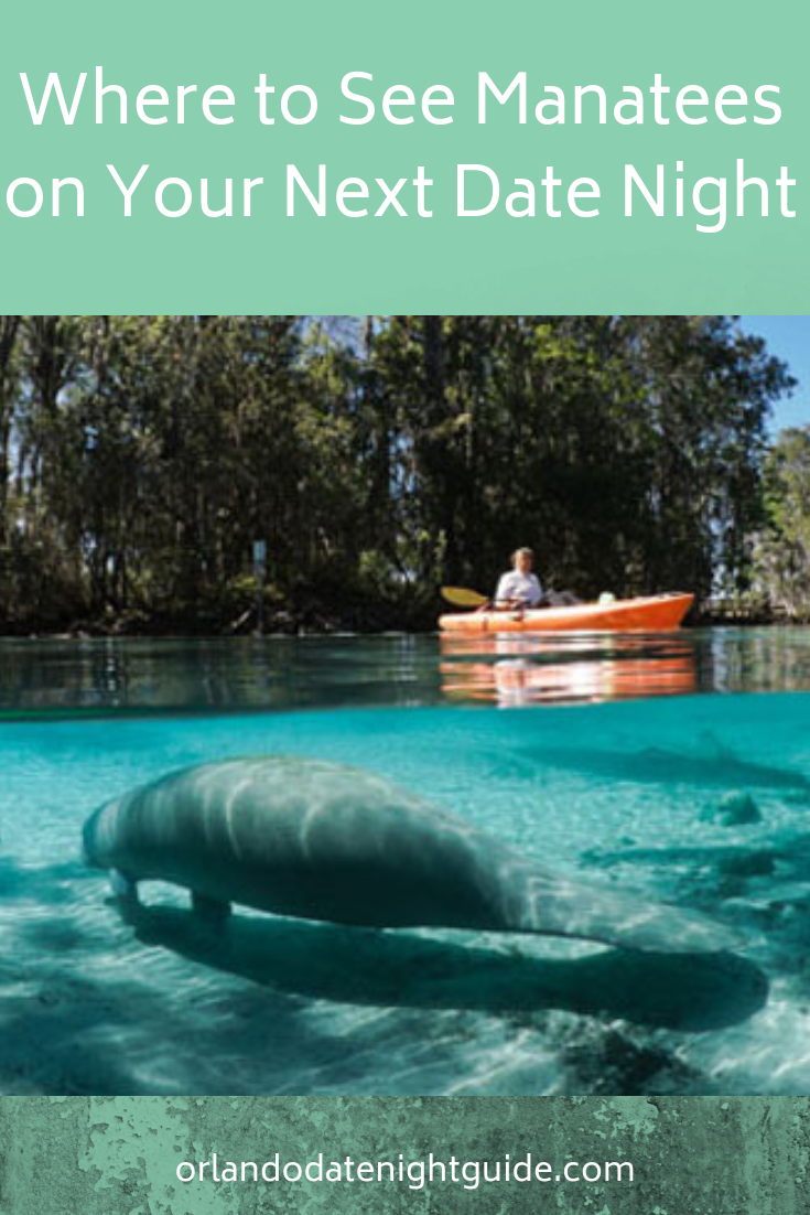 pin by date night guide on date night ideas in orlando in 2018