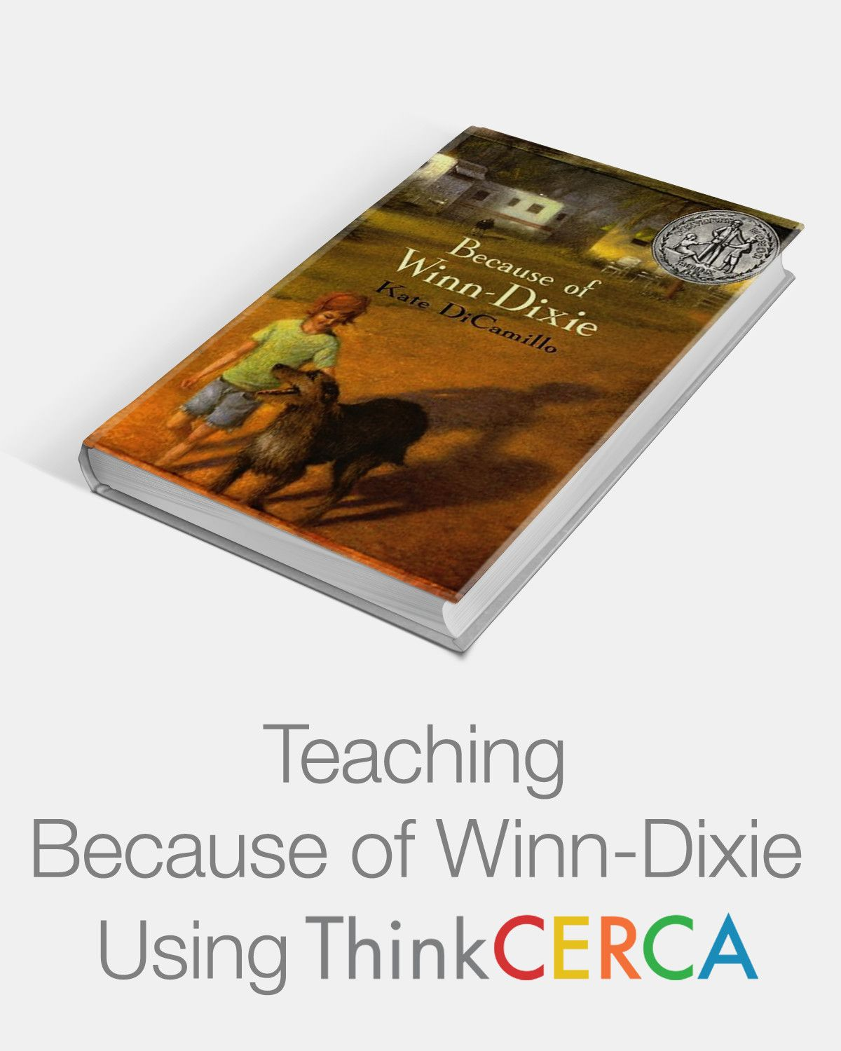 Differentiated Lessons For Teaching Because Of Winn Dixie