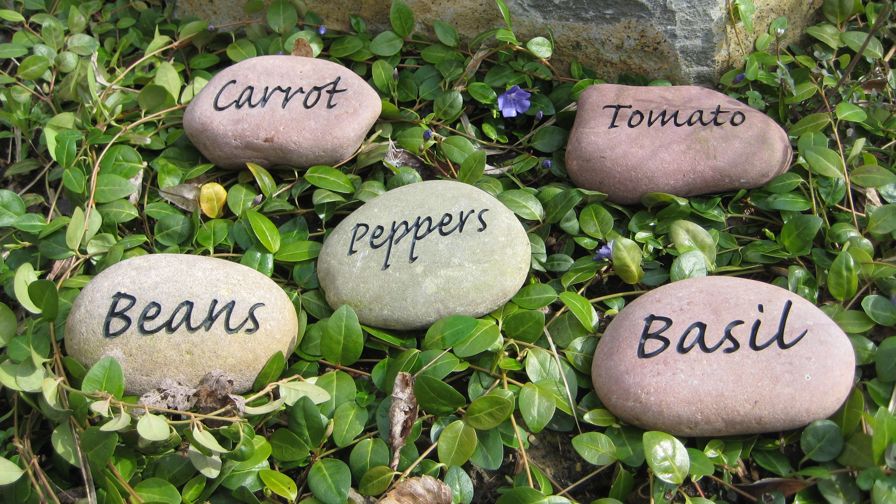 stones step stepping garden to make how with wikihow pictures personalized