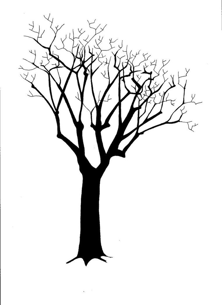 For Silhouette Tree Trunk Silhouette Art