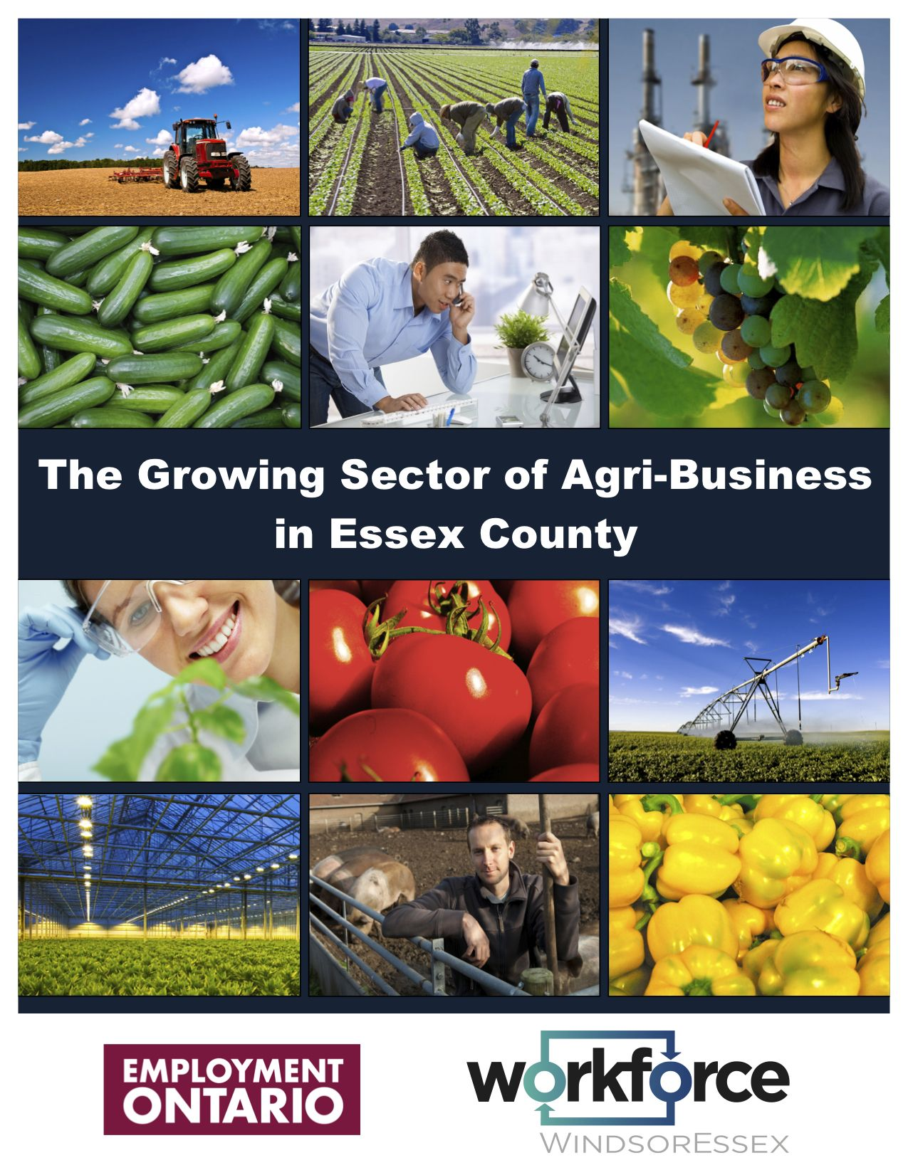 The Growing Sector of Agribusiness in Essex County Report