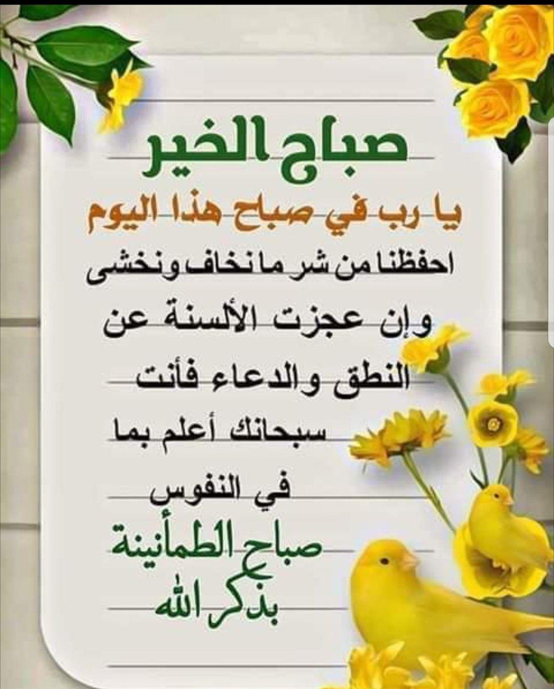صباح الرضا حين يرزقنا الله الرضا لن تهزمنا الد نيا ولن تغلبنا الأوجاع سنجتاز ال Beautiful Morning Messages Good Morning Arabic Good Morning Messages