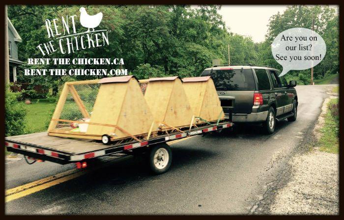 48 Rent The Chicken Ideas Chicken Rent Coops