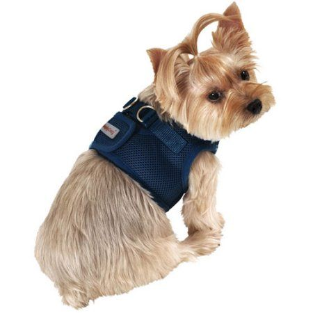 Pets Dogs Pet Accessories Pets